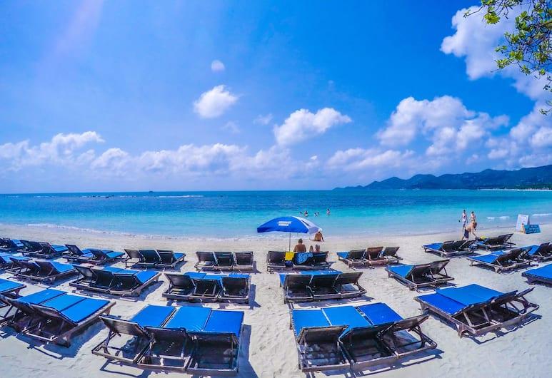 阿肯酒吧海灘渡假村, 蘇梅島, 海灘