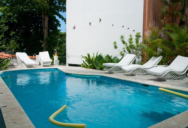 Hotel Refugio Neptuno's, Boca Chica, Outdoor Pool