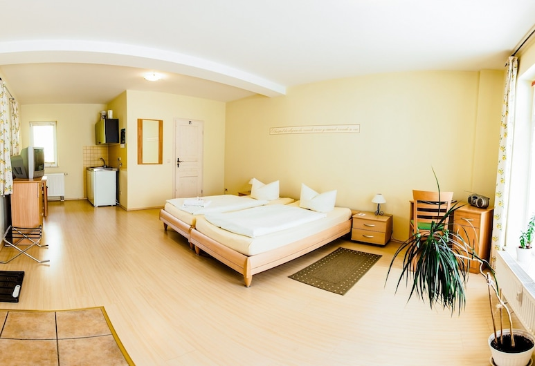 Hotel Pension Mandy, Senftenberg, Lägenhet Standard, Gästrum