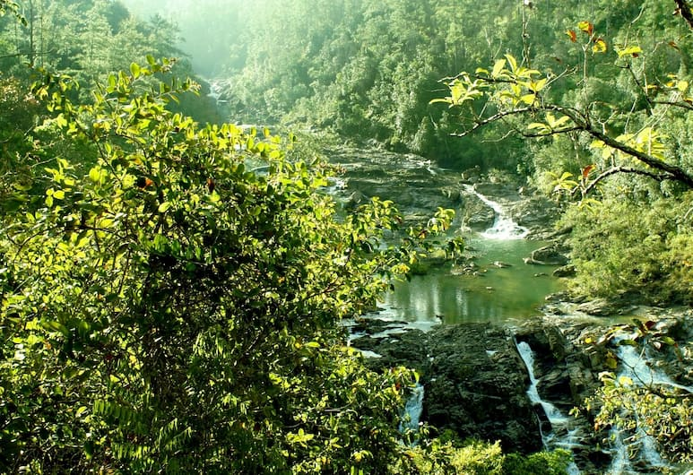 Gaia Riverlodge, San Ignacio