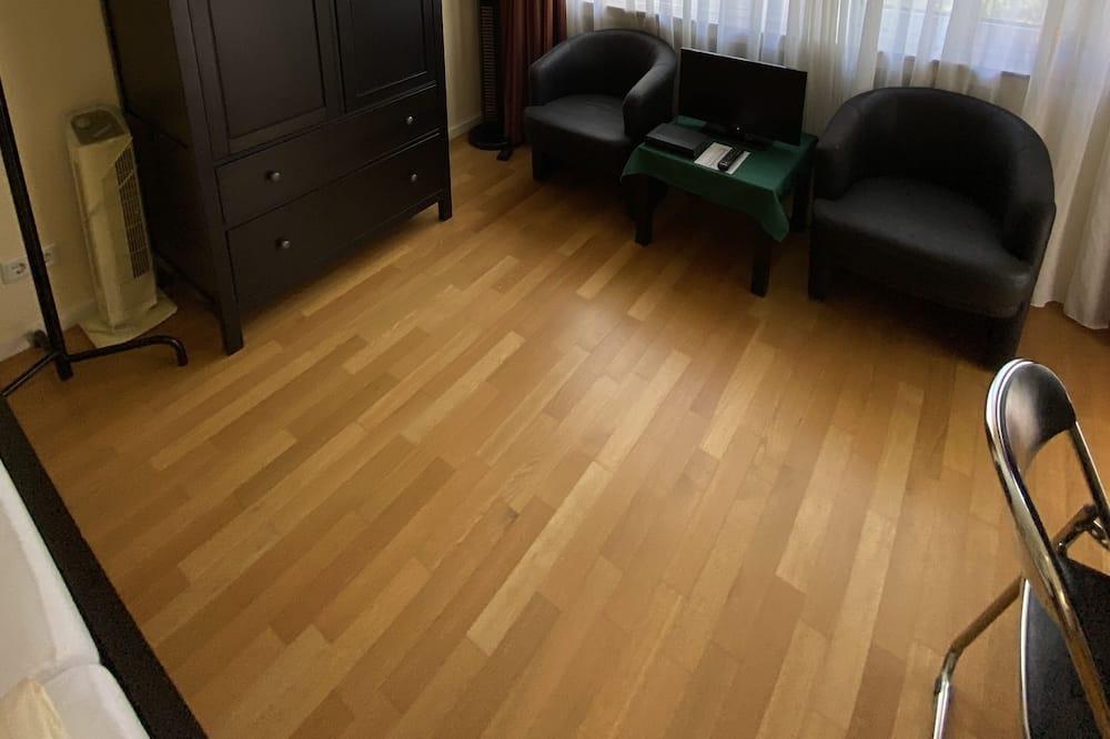 Apartment (Mathildenstrasse) - Living Area