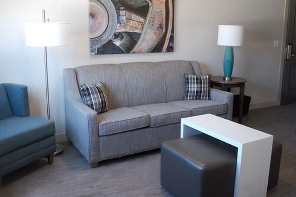 經典開放式套房, 1 張特大雙人床和 1 張沙發床 - 客廳
