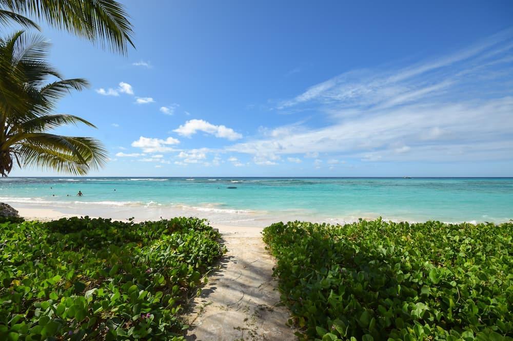 דירה, חדר שינה אחד - חוף ים