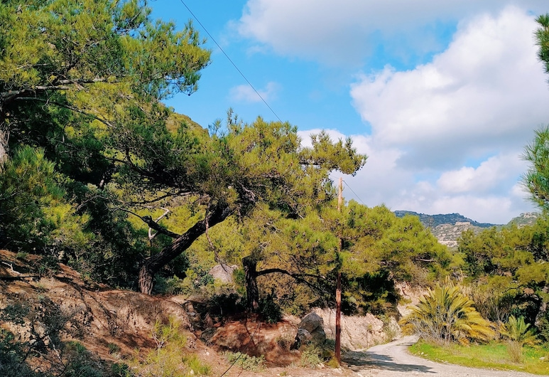 Oleander's Garden, Jerapetra, Kiemas