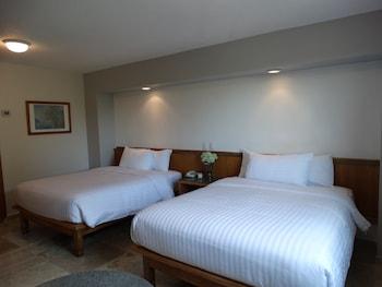 在克雷塔罗的Hotel Amberes照片