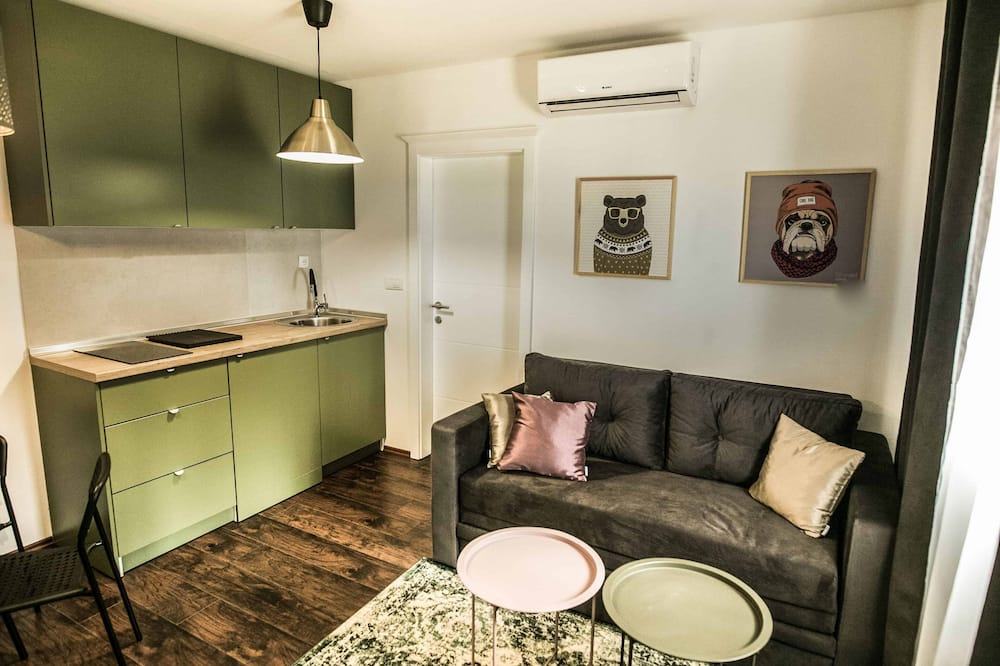 Basic Apartment, 1 Bedroom (2) - Living Area
