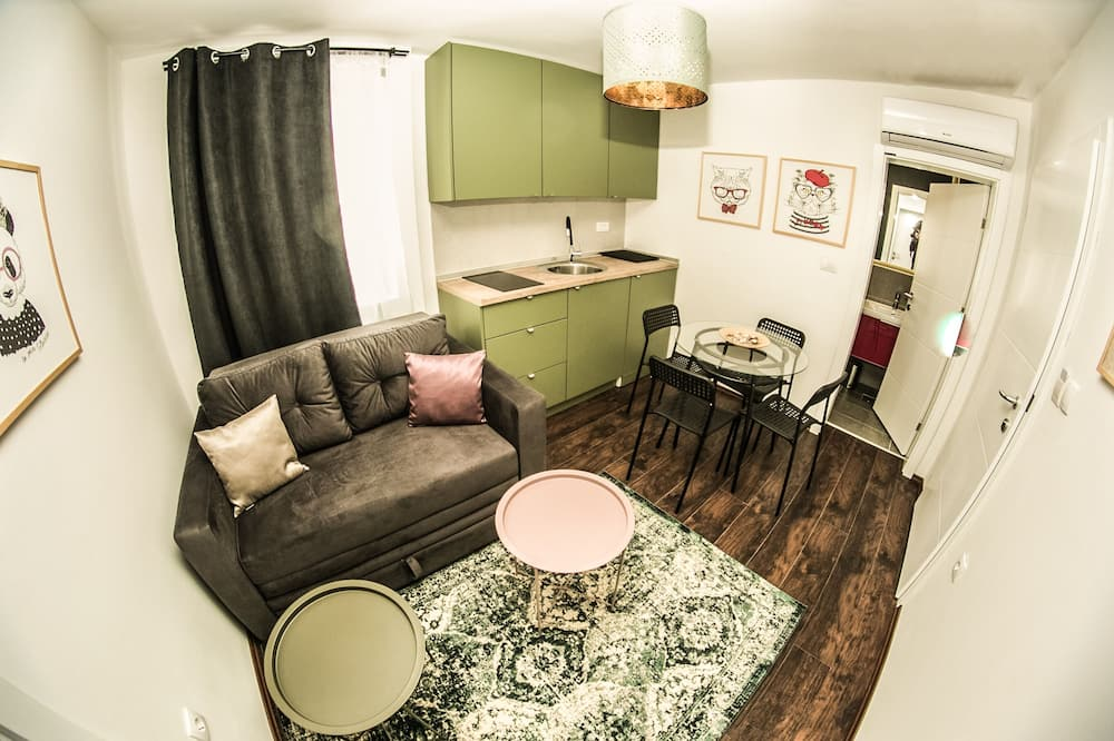Basic Apartment, 1 Bedroom (7) - Living Area