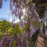 ファミリー ヴィラ ベッド (複数台) ガーデン (Villa di Charme) - バルコニー