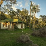 Luxury Double or Twin Room - Garden View