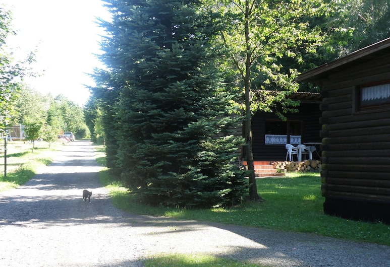 Tidy Furnished Wooden Chalet, Located Close to the Forest, Buchet