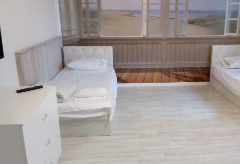 エンパイア ホテル DM, ドモジェドヴォ, スタンダード ツインルーム, 部屋