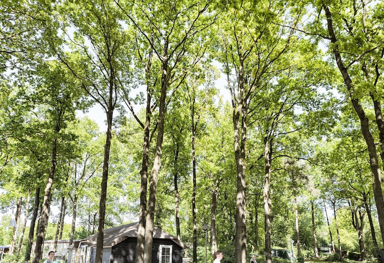 Striking Chalet With Dishwasher, Surrounded by Nature, IJhorst, Välisilme