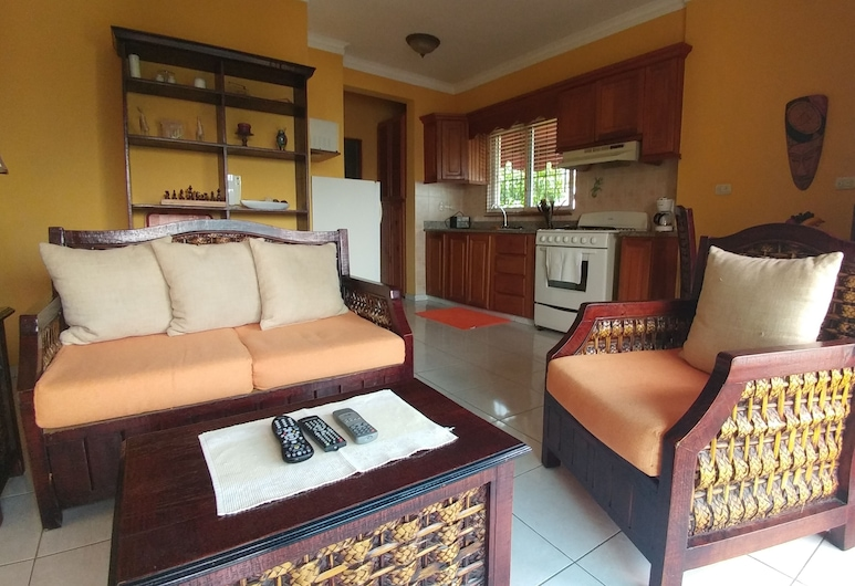 Cozy 1-bedroom-apartment Just 5 Minutes From Zona Colonial, サント ドミンゴ