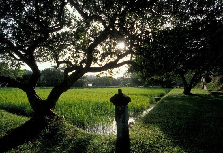Lunuganga Country Estate, Bentota