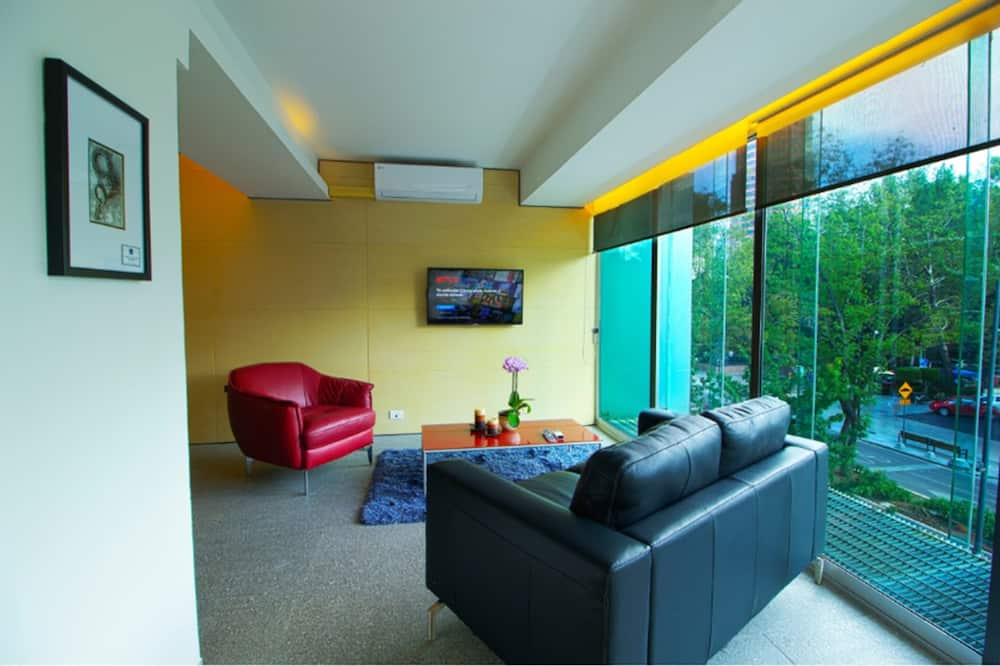 Standartinio tipo apartamentai, vaizdas į miestą - Svetainė