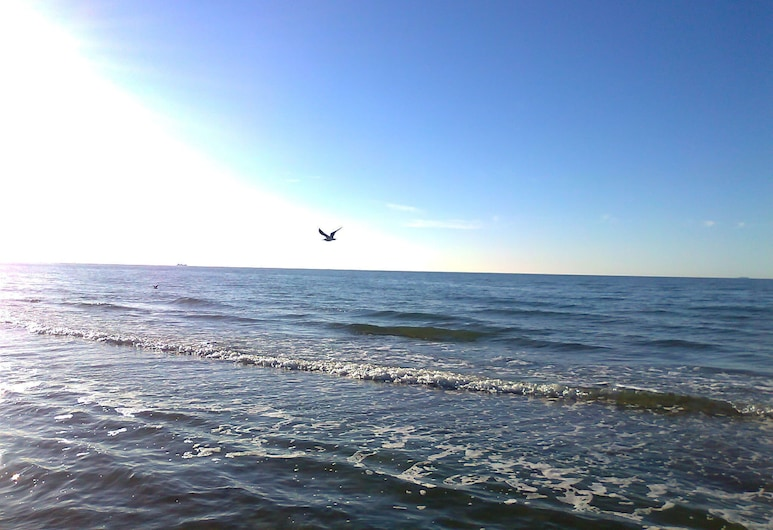 Exclusive Bungalow in Rerik Germany With Terrace, Rerik, Beach