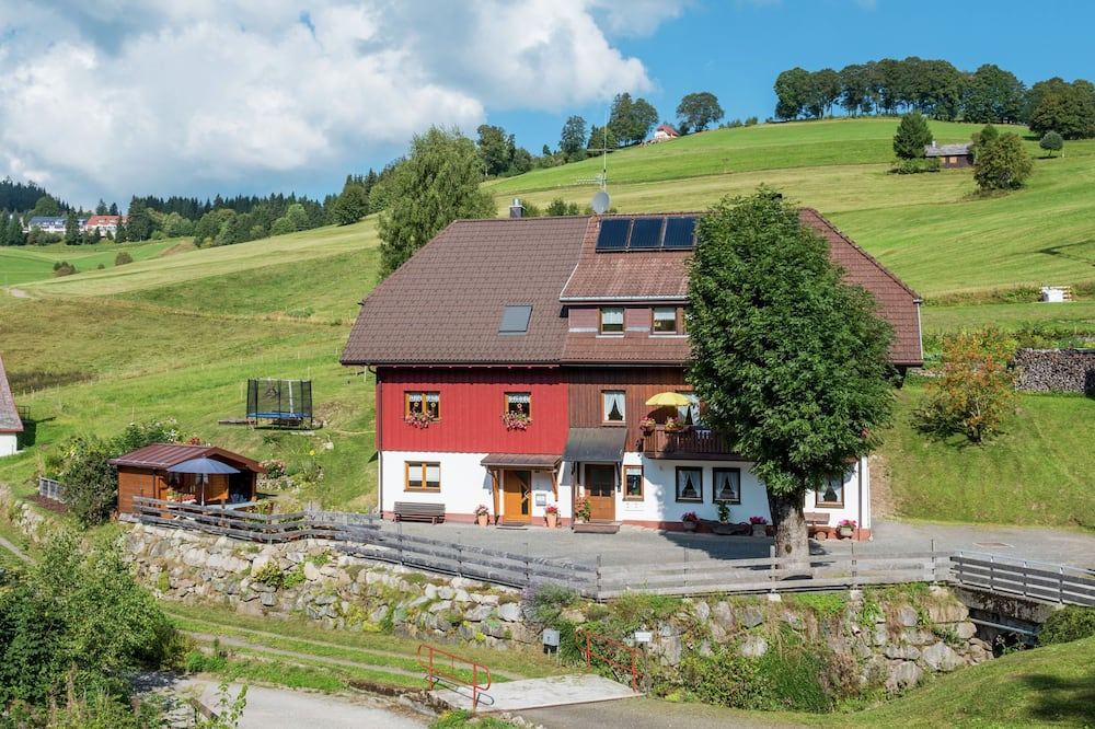 Luxurious Apartment in Todtnauberg With Terrace