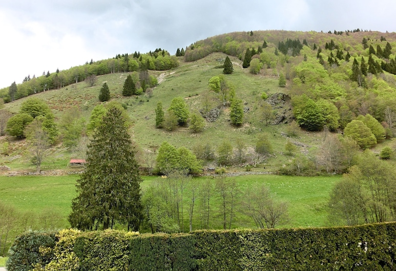 Hilltop Apartment in Brandenberg With Balcony, Todtnau, Property Grounds