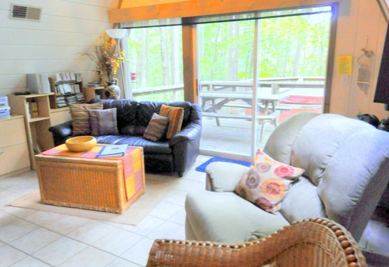 Dream Time, Berkeley Springs, House, 2 Queen Beds (Dream Time), Living Area