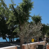 Deluxe Double or Twin Room, Sea View (2) - Terrace/Patio