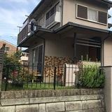 Bonel Guest House