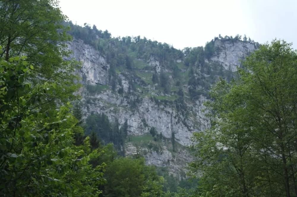 Huone (Katzenzimmer) - Vuoristonäköala