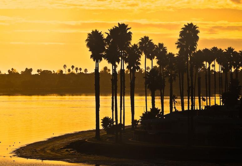 ラックス バンカーズ ヒル ドリーム :ウォーク トゥ ダウンタウン & バルボア 3 ベッドルーム タウンハウス, サンディエゴ, 庭園