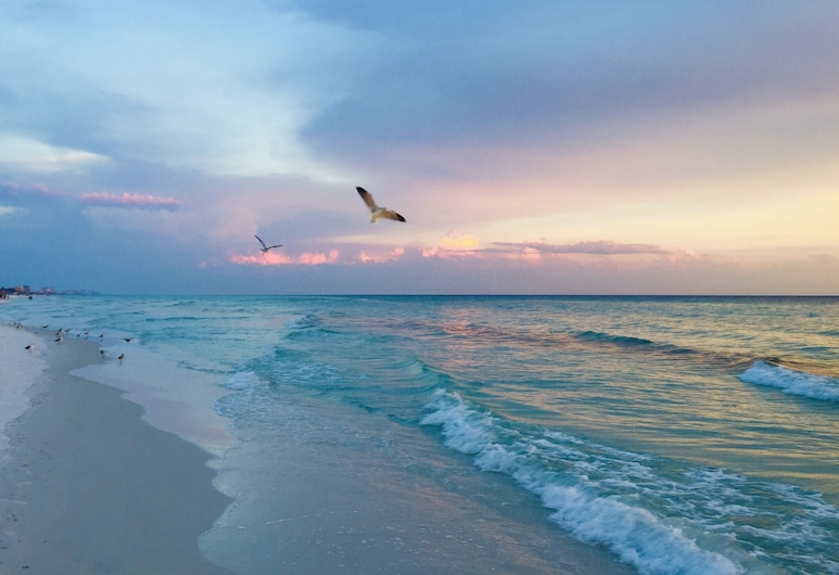 Walk To Shore! Crystal Beach Dream W/ Private Pool 4 Bedroom Home, Дестин, Коттедж, 4 спальни, Пляж