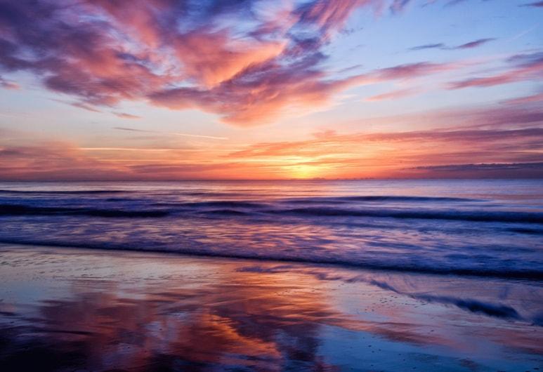 Beachfront At Amenity-rich Sea Watch Resort 2 Bedroom Condo, Myrtle Beach, Mieszkanie, 2 sypialnie, Plaża