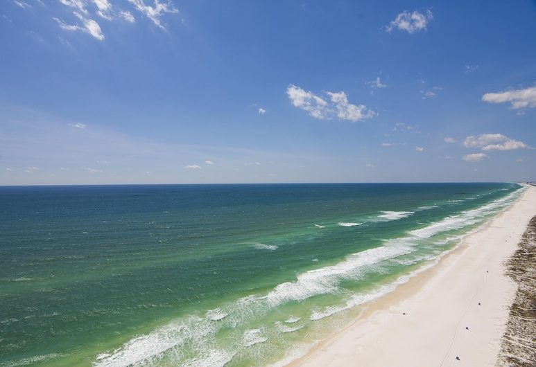 Celadon Beach Resort by Book That Condo, Panama City Beach, Ranta