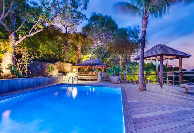 Dream Villa SBH Lama, St. Barthelemy, Hồ bơi