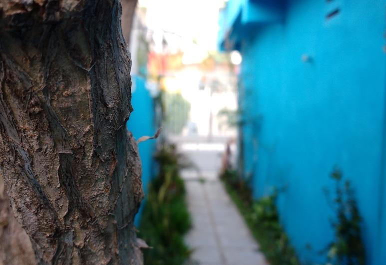 Pez Azul is an a Apartment, Playa del Carmen, Hotelgelände