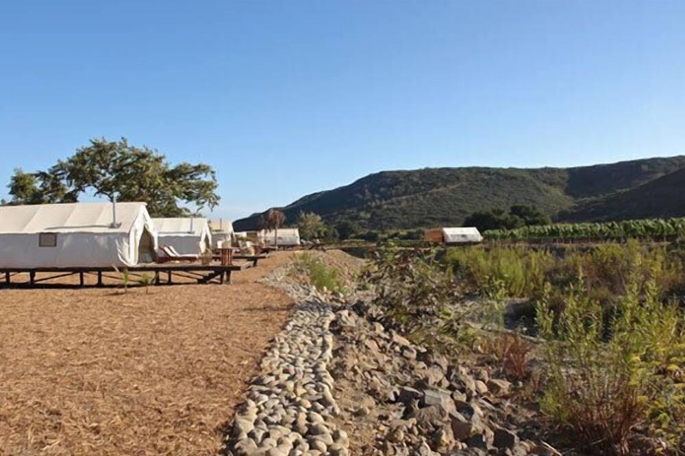 Kilátás a völgyre