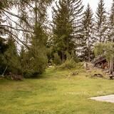 วิวสวน