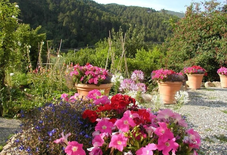 Adorable Tuscan Cottage With Beautiful Garden Just Outside Lucca, Sleeps 4, Capannori, Property Grounds