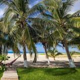 Triple Room, Ocean View - Beach/Ocean View