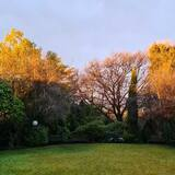 Luxury Δίκλινο Δωμάτιο (Double) (O'Malley Suite) - Θέα στον κήπο