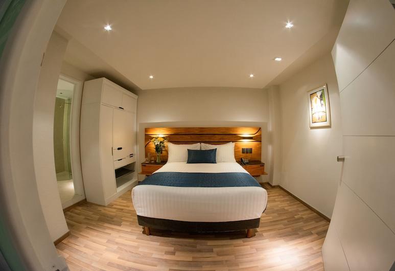 Hotel Boutique Maria, Morelija, Žemesnės liukso klasės kambarys, Svečių kambarys