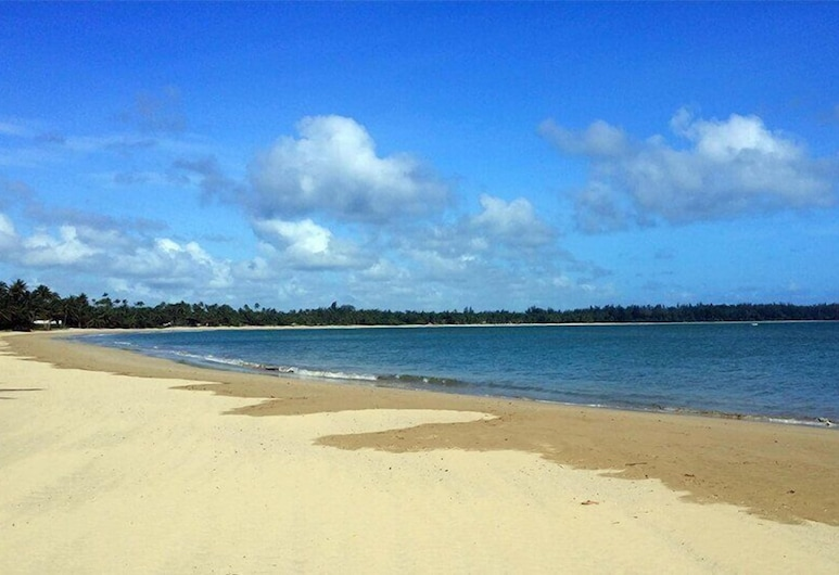 5 Star Caribbean Villa, Rio Grande, Beach