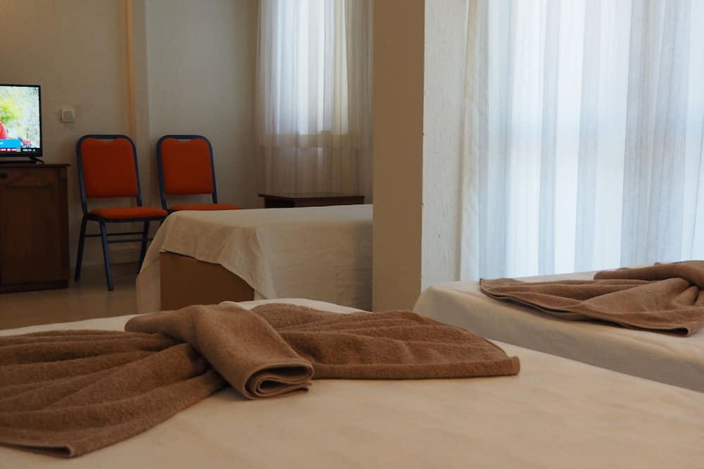 Štandardná dvojlôžková izba - Obývačka