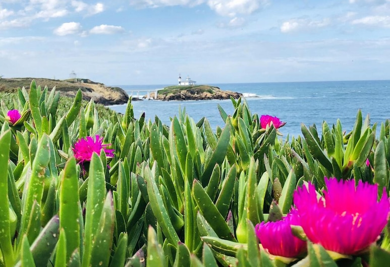 Apartment With 3 Bedrooms in Ribadeo, With Wifi, Ribadeo, Garden