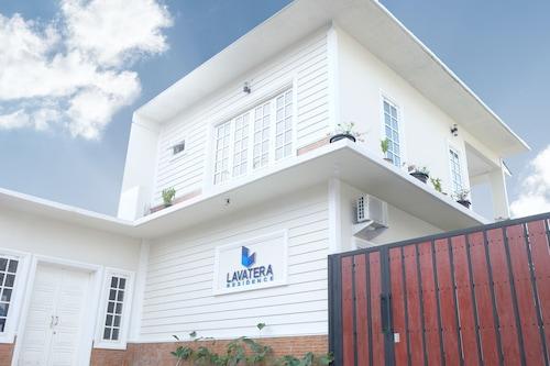Lavatera