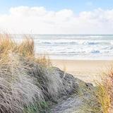 Maja, Voodeid on mitu (Sea Here) - Rand
