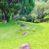 Suite Prestigio, 2 baños, vista al jardín - Vista al parque