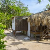 Shared Cabin, Mixed Dorm, 8 Beds (Cabaña Caribeña) - Guest Room