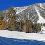 Olahraga Salju dan Ski