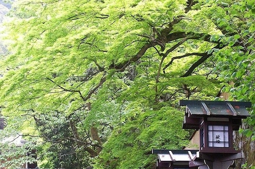 Chourakuji