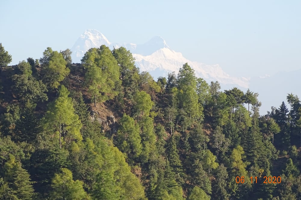 The Himalayan View Cottage