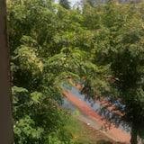 Double Room - Garden View