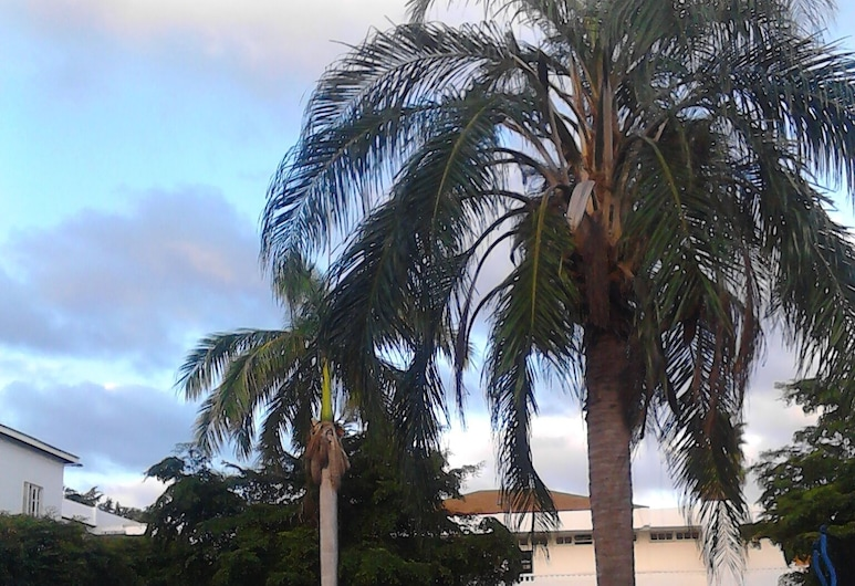 Sea Shell Palms, Tower Isle, บริเวณโรงแรม